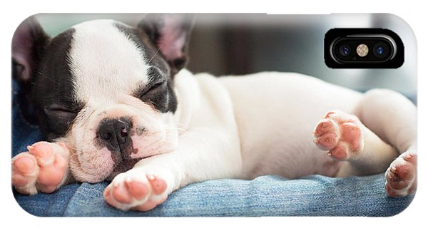 Small Dog iPhone Case - French Bulldog Puppy Sleeping On Knees by Patryk Kosmider