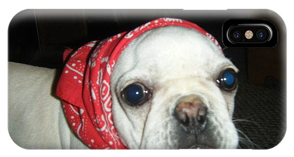 French Bull Dog iPhone Case - Frenchie In His Bandanna by Barbra Telfer