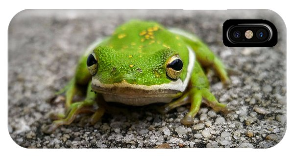 IPhone Case featuring the photograph Frogger by Vincent Autenrieb