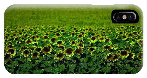 Middle Of Nowhere iPhone Case - Front Row Sunflower Smiles by Jeff Swan