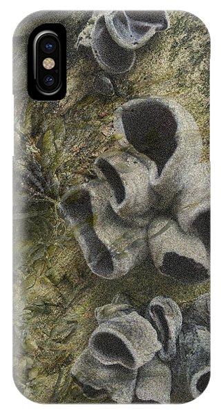 Fungi And Algae IPhone Case