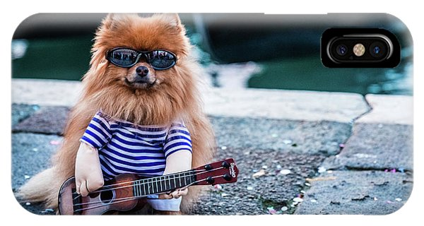 Funny Dog At The Carnival In Venice IPhone Case