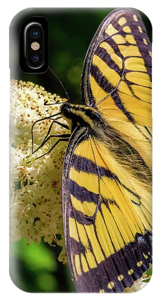 Fuzzy Butterfly IPhone Case