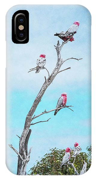 IPhone Case featuring the photograph Galahs On The Lookout by Elaine Teague