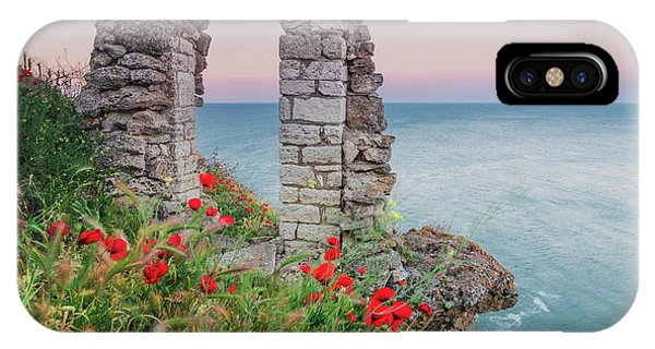 Gate In The Poppies IPhone Case