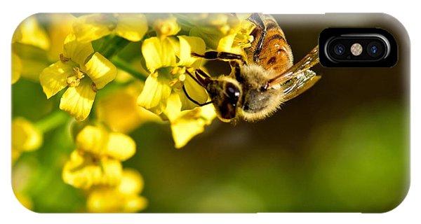 Gathering Pollen IPhone Case
