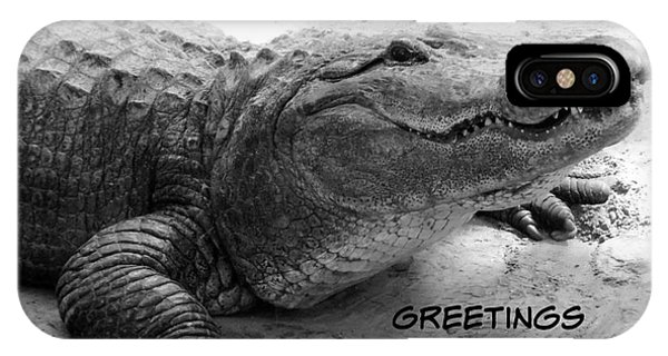 iPhone Case - Gator Greetings From Florida by Carol Groenen