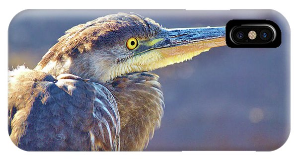 Gbh Waiting For Food IPhone Case