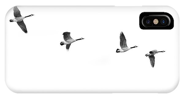 Canada Goose iPhone Case - Geese In Flight by Jim Hughes
