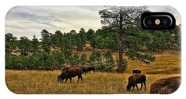 IPhone Case featuring the photograph Genesee Bison Herd by Dan Miller