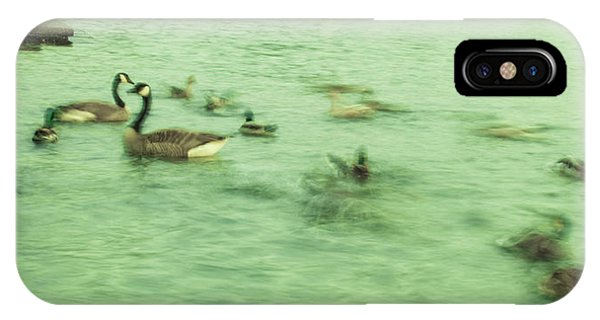 Ghost Ducks IPhone Case
