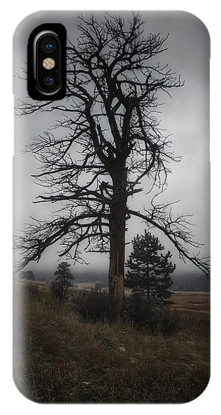 IPhone Case featuring the photograph Ghostly Snag by Dan Miller
