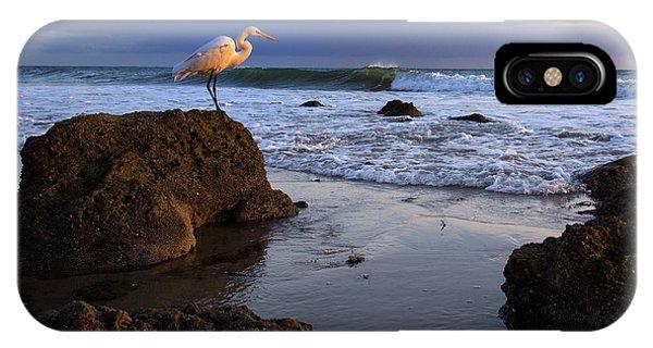 Giant Egret IPhone Case