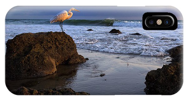 Giant Egret IPhone Case