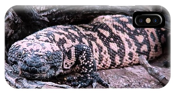 Gila Monster Under Creosote Bush IPhone Case