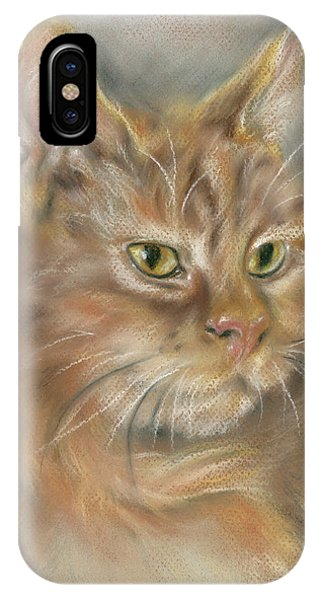 Ginger Tabby Cat With Black And White Whiskers IPhone Case