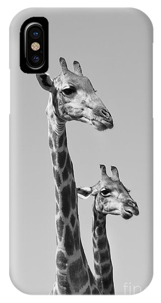 Giraffe - African Wildlife Background - Phone Case by Stacey Ann Alberts