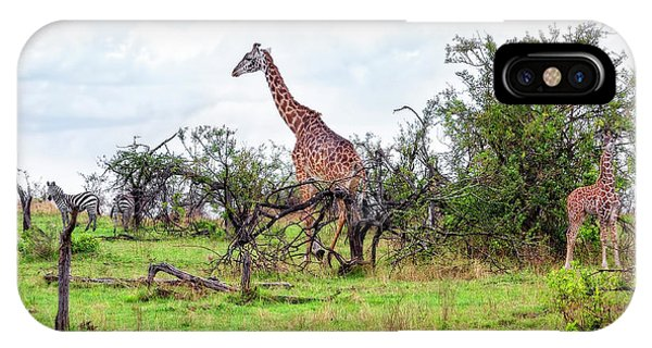 IPhone Case featuring the photograph Giraffe Landscape by Kay Brewer
