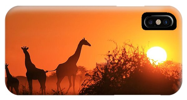Harmony iPhone Case - Giraffe Silhouette - African Wildlife by Stacey Ann Alberts