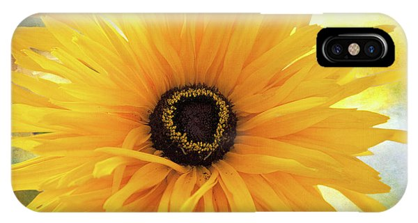 IPhone Case featuring the photograph Gloriosa Daisy by Ann Jacobson