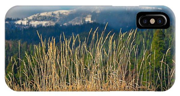 Gold Grass Snowy Peak IPhone Case