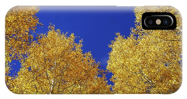 Golden Aspens And Blue Skies IPhone Case