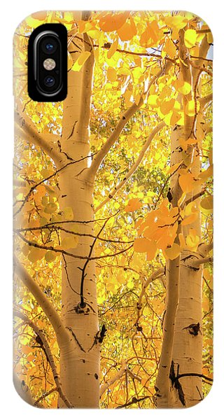 Golden Aspens In Grand Canyon, Vertical IPhone Case