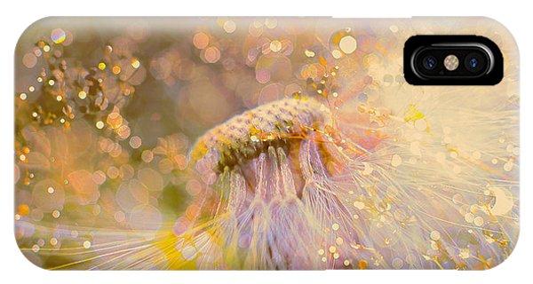 Purple Rain iPhone Case - Golden Dandelion by Tim Palmer