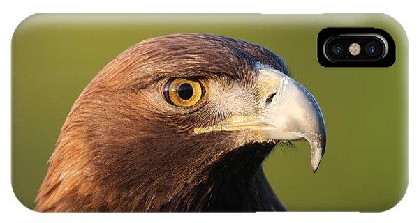 Golden Eagle 5151801 IPhone Case