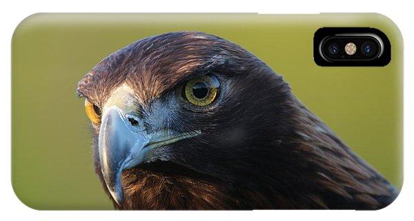 Golden Eagle 5151802 IPhone Case
