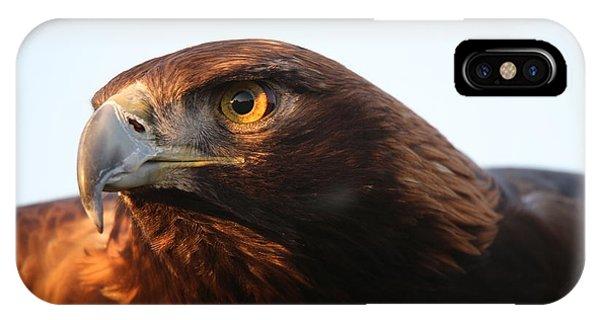 Golden Eagle 5151803 IPhone Case