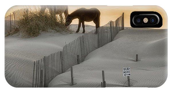 Golden Horses IPhone Case