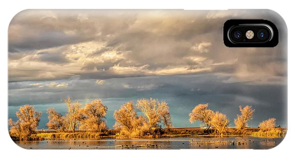 Golden Hour In The Refuge IPhone Case