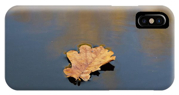 Golden Leaf On Water IPhone Case