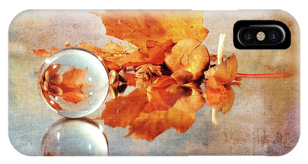 IPhone Case featuring the photograph Golden Tones Of Fall by Randi Grace Nilsberg