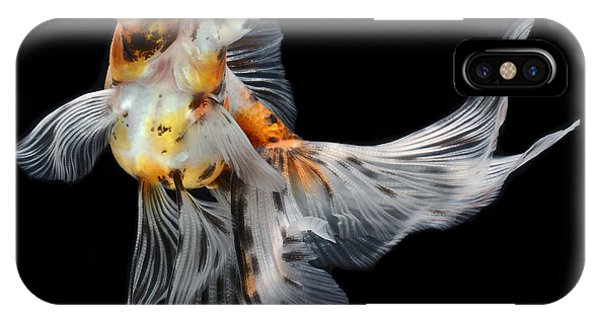 Fins iPhone Case - Goldfish Isolated On Black Background by Bluehand