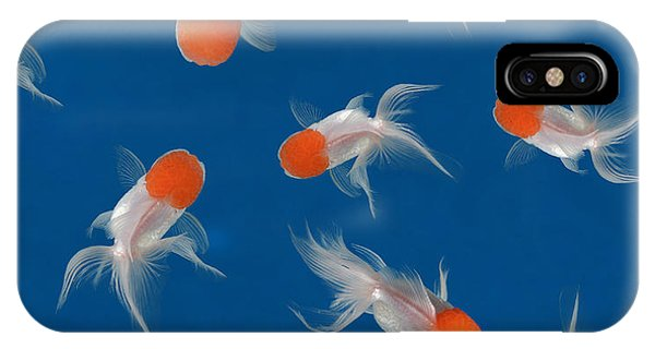 Aquatic iPhone Case - Goldfish Texture On Blue Background For by Bluehand