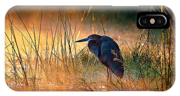 Horizontal iPhone Case - Goliath Heron Ardea Goliath With by Johan Swanepoel