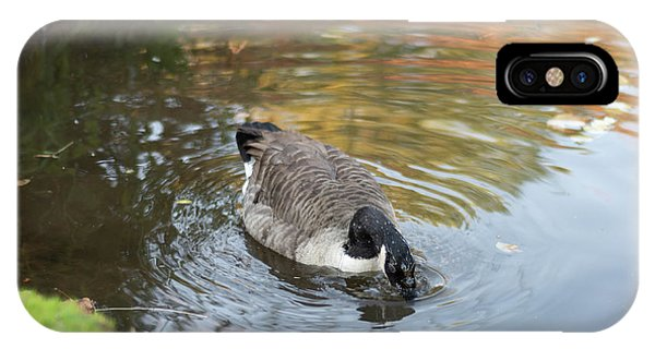 IPhone Case featuring the photograph Goose Head In Water by Scott Lyons