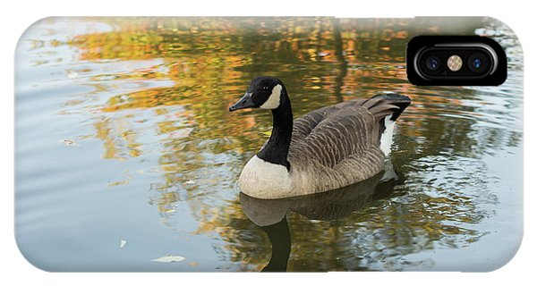 IPhone Case featuring the photograph Goose Reflecting In Water by Scott Lyons