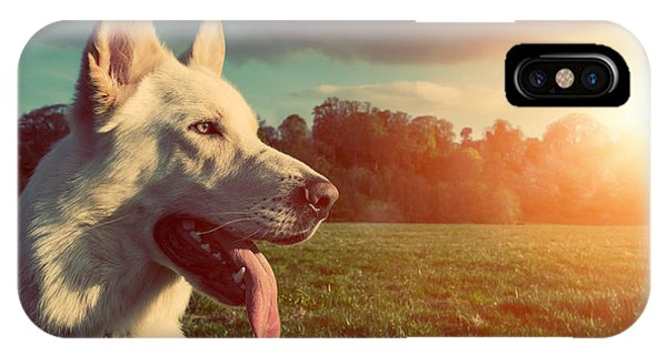 Young iPhone Case - Gorgeous Large White Dog In A Park by Abo Photography