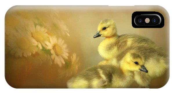Gosling iPhone Case - Goslings And Daisies by Donna Kennedy