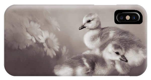 Goslings iPhone Case - Goslings And Daisies - Sepia by Donna Kennedy