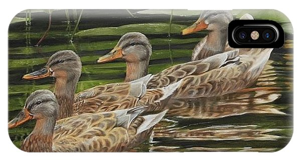 IPhone Case featuring the painting Got My Ducks In A Row by Tammy Taylor