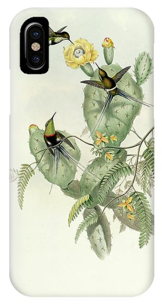 Humming Bird iPhone Case - Gouldia Langsdorffi by John Gould