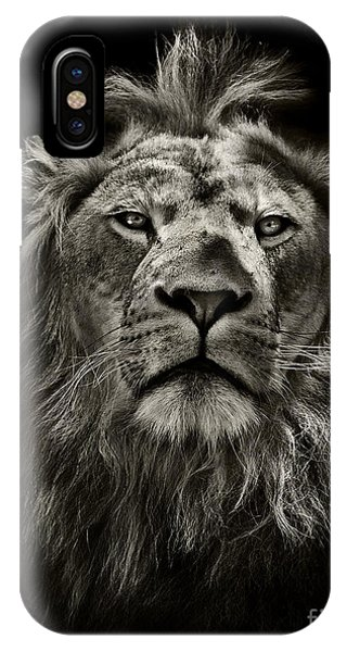 Male iPhone Case - Graphic Black And White Lion Portrait by Mark Higgins