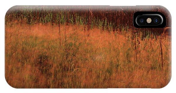 Grasses And Sugarcane, Trinidad IPhone Case