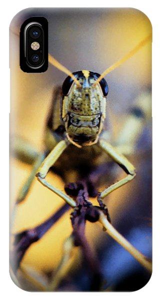 IPhone Case featuring the photograph Grasshopper by Jon Burch Photography