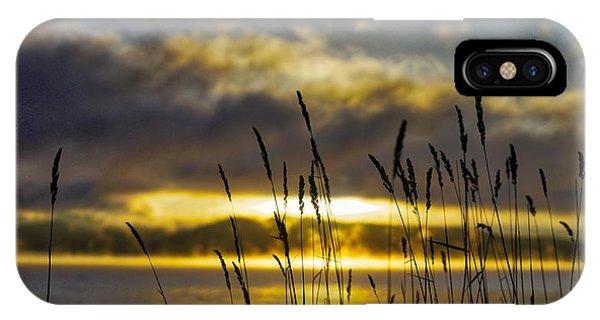 Grassy Shoreline Sunrise IPhone Case