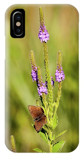Gray Copper On Blazing Star IPhone Case